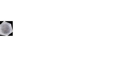 北京网站建设 北京网站设计-20年网站建设公司【东方网景】